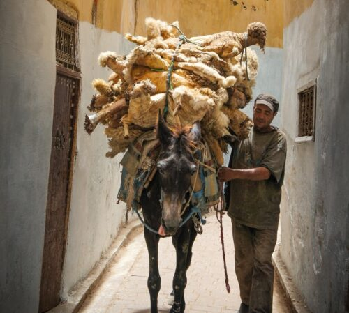 horse carrying dolls on pathway with a man